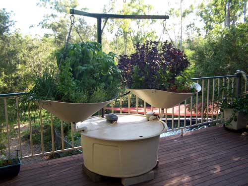 The hanging gardens of balcony new aquaponics kit for Balcony aquaponics